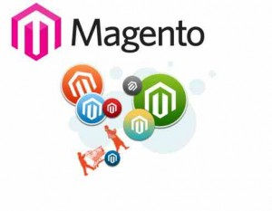 Real Facts About Magento