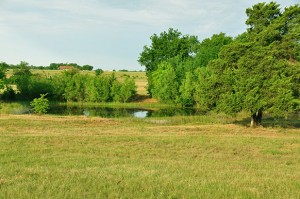 Why Should You Invest In Texas Land?