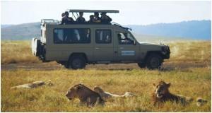 Budget Safaris in Tanzania