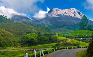 Munnar – A Perfect Fit For Solo Travelling