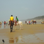 Your 24-Hour Guide To Digha