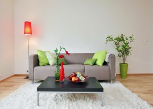 Creating a Healthy Home Environment2